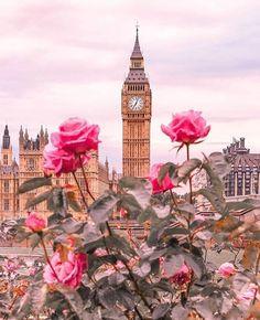 Big Ben – London, United Kingdom – England – United Kingdom / Great Britain – United Kingdom + Pink Roses / Pink Roses rnrnSource by irish_r Big Beautiful Houses, Beautiful Places, Beautiful Pictures, Beautiful Beautiful, Girly Pictures, Big Ben London, Love Wallpaper, Wallpaper Backgrounds, Backgrounds Girly