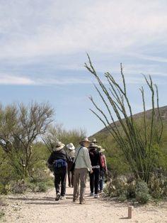 Freeman homestead trail in Saguaro Park east