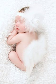 Baby Girl Angel Wings White Rose Feather Wings with Matching Rose Headband Set