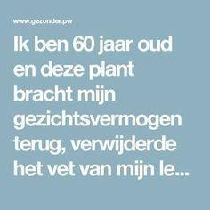 Ik ben 60 jaar oud en deze plant bracht mijn gezichtsvermogen terug, verwijderde het vet van mijn lever en maakte mijn darmen schoon – Gezonder
