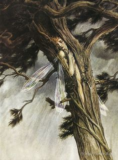 Paul Vincent Woodroffe, Illustration for The Tempest by William Shakespeare The Tempest Shakespeare, William Shakespeare, Fairy Land, Fairy Tales, Tumblr, Forest People, Tree People, John Howe, Kobold
