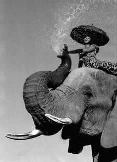 Naomi Campbell by Jean Paul Goude for Harper's Bazaar (September Photo Elephant, Elephant Love, Elephant Shower, Elephant Gun, Elephant India, Elephant Stuff, Elephant Walk, Naomi Campbell, Alpacas