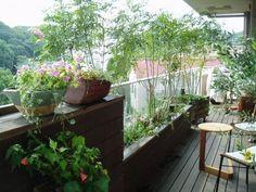狭くても!ベランダ&バルコニーガーデン | 広島のガーデンコーディネーター ゆっこの庭・寄せ植え教室