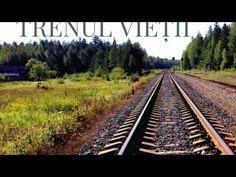 Railroad Tracks, Train, Youtube, Life, Strollers, Youtubers, Youtube Movies, Train Tracks