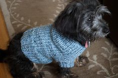 Izzy's Hooded Dog Sweater