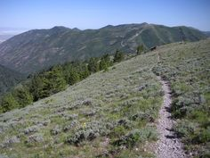 Trail above Butterfield Canyon Oquirrh Mountains, Utah