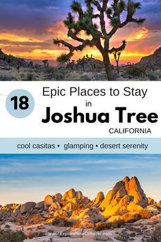 Heading to Joshua Tree? From vintage Airstreams and cozy cabins to luxe retreats and a stargazer bubble, this is a list of amazing Airbnbs that guests love most. Read more here. Where to stay in Joshua Tree | Best Joshua Tree Airbnbs | Joshua Tree travel tips California Attractions, California Travel Guide, California Cool, Travel Guides, Travel Tips, Unique Hotels, Stargazer, Cozy Cabin, Best Hikes