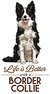 Border Collie Life Is Better White Background 24x36 Gallery