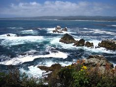 Hiking - Point Lobos - Carmel California Hikes  California Hiking Point Lobos - Carmel California Hwy 1. So beautiful and lots of trails that are pretty easy for the most part. Lots to do with kids!!!   #California Hiking