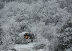 Small Cozy Home in a Winter Wonderland