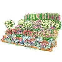 Fragrant Slope Garden Plan- some areas of my slopes would be perfect for this type of garden plan