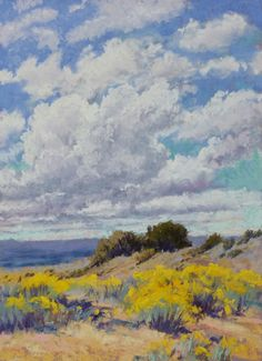 Clouds and Chamisa 12x9 Pastel © Lee McVey