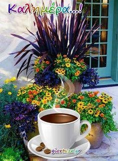 Καλημέρα ...giortazo.gr - Giortazo.gr Greek Language, Beautiful Pink Roses, Good Morning Good Night, Coffee, Flowers, Plants, Greek Quotes, Sayings And Quotes, Watercolor Painting
