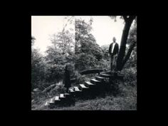 ▶ Timber Timbre ~ Like a Mountain