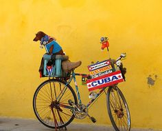 Cuba - I met this dog and his owner!