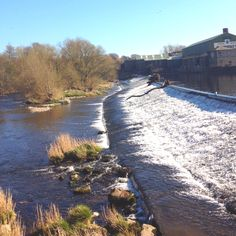 Otley Park Yorkshire Day, Paper Mill, Leeds, Buildings, England, River, Park, Places, House