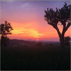 """""""Quando non è ancora buio e non è già più giorno"""" 🌄 La #PicOfTheDay #turismoer di oggi ammira il #tramonto da #Leguigno sulle dolci colline di #Canossa nell'#Appennino Reggiano. Complimenti e grazie a @giadarabotti / """"When it's not dark yet"""" 🌄 Today's #PicOfTheDay #turismoer admires the #sunset from Leguigno over the gentle hills of Canossa in #ReggioEmilia's #Apennines. Congrats and thanks to @giadarabotti"""