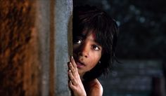 Neel Sethi stars as Mowgli in Walt Disney Pictures' The Jungle Book - Movie still no 11 Cgi, Neel Sethi, Jungle Book 2016, Law Of The Jungle, Hidden Movie, Jon Favreau, Action Movies, See Movie, The Jungle Book