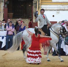Baile flamenco con caballos, un precioso espectáculo / Flamenco dance with horse, a beautiful show