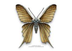 ... Steampunk Butterfly ..
