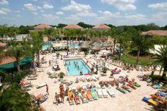Florida Bay Tampa Caliente In Resort