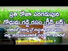 vijayyoutubevideos: health tips in telugu|గోధుమ గడ్డి రసం|health benef...