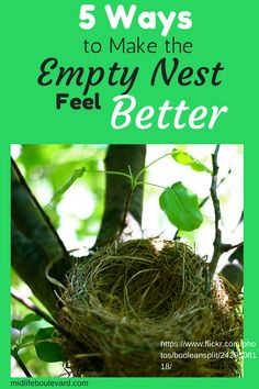 5 Ways to Make the Empty Nest Feel Better - Midlife Boulevard Empty Nest Quotes, Margaret Rutherford, Empty Nest Syndrome, Kids Growing Up, 5 Ways, Feel Better, Finding Yourself, Marriage, Wellness