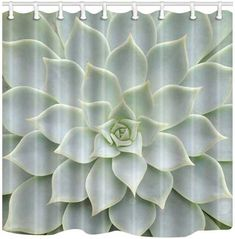 Succulents Shower Curtain - How to Refresh a Bathroom on a Budget Cactus Shower Curtain, Green Shower Curtains, Bathroom Decor Sets, Budget Bathroom, Sage Green Bedroom, Cool Fabric, Planting Succulents, Deserts, Home And Garden