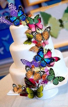 Welcome Spring Summer Edible Butterfly Cake Decorations,cupcake toppers,cookie… Gorgeous Cakes, Pretty Cakes, Cute Cakes, Yummy Cakes, Amazing Cakes, Crazy Cakes, Fancy Cakes, Butterfly Cakes, Paper Butterflies