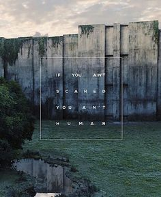 the maze runner wallpaper Newt Maze Runner, Maze Runner Quotes, Maze Runner Trilogy, Maze Runner Thomas, Maze Runner Movie, Maze Runner Series, Maze Runner Death Cure, James Dashner, Maze Runner Wallpaper