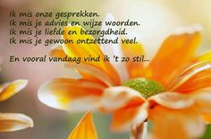ik mis je - Google zoeken Loosing Someone, Missing Loved Ones, Ill Never Forget You, Dutch Words, Miss You Mom, Death Quotes, More Than Words, I Missed, Grief