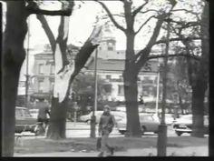 HISTORIA. Det började med ovädret den 22 september över Sydsverige, som vad skadeverkningarna beträffar hör till de värsta och mest omfattande som överhuvudtaget förekommit.Stor trädfällning, allvarliga skador på bebyggelse och telenät, sjöolyckor och störningar på kommunikationer stod på skadelistan. De totala skadorna belöpte sig till ca 500 miljoner kronor, i 1969 års penningvärde. Tio dödsoffer… 22 September, World, Outdoor, History, Outdoors, The World, The Great Outdoors, Earth