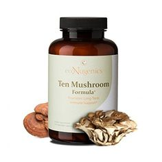 Ten Mushroom Formula is a comprehensive blend of organically grown medicinal mushrooms. These mushrooms act synergistically to reinforce the immune system while supporting total-body health throughout the seasons. Turkey Tail Mushroom, Vitamin K, Total Body, Stuffed Mushrooms, Herbs, Things To Sell, Health, Link, Fitness