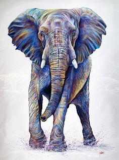 View portfolio categories of contemporary colorful wildlife paintings and animal art prints by Artist Teshia. Featuring animal paintings and fine art prints. Wildlife Paintings, Wildlife Art, Animal Paintings, Animal Drawings, Portfolio D'art, Elephant Spirit Animal, Elephant Artwork, Elephant Elephant, Nam June Paik