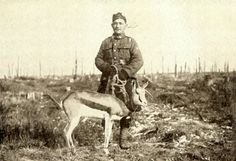 Nancy, springbok mascot of the South African Regiment, in Delville Wood, 17 February