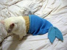Disfraces para Mascotas en Halloween - Disfraz Sirenita para gatos