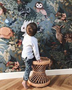 Woodlands Wallpaper by Jimmy Cricket – Peek&Pack - Modern Woodland Room, Woodland Nursery Girl, Boho Nursery, Baby Nursery Decor, Whimsical Nursery, Kids Room Wallpaper, Animal Wallpaper, Kindergarten Wallpaper, Cricket Wallpapers