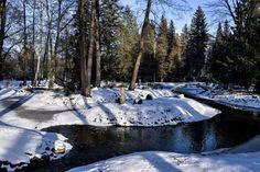 Winter in the manor park in Iłowa, southwestern Poland