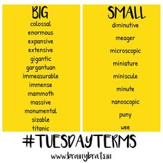 Synonyms for Big and Small. #Vocabulary #EnglishLanguage #BrainyBrats