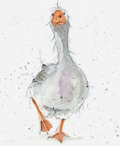 DoodleDoo Personalised Charity Cards for all occasions - NOT just Christmas. Watercolor Bird, Watercolor Animals, Watercolor Paintings, Watercolours, Animal Paintings, Animal Drawings, Art Drawings, Bird Art, Pet Birds