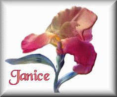 Janice - http://www.picgifs.com/name-graphics/j/janice/name-graphics-janice-307630.gif