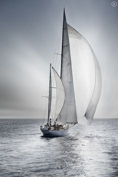 This photo captures the wonderful subtle quiet of sailing in light air. Silently ghosting along, with only a muted white noise of gurgling water as you slip through. McC