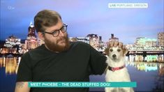 "A man and his stuffed dead dog seem to be inseparable. Mitch Byers, from Portland, Oregon, uses Instagram to document his activities with the cute Jack Russell terrier – but for the record Byers' dog is dead. Phoebe died in 2013, however she ""still loves to have her tummy tickled, be photographed and go on …"