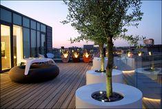 19 Divine Contemporary Backyard Designs