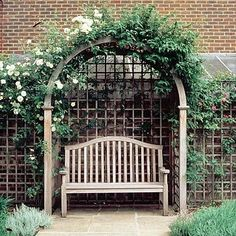 Beautiful Views: ROSE QUEEN OF DENMARK GROWS OVER A TRELLISED ARBOUR AND WOOD..
