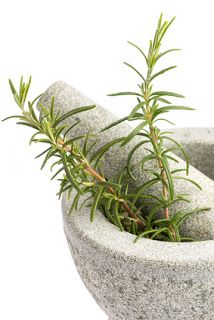 The medicinal herb rosemary is known to improve memory and reduce oxidative stress. Can it also help you manage your blood sugar levels? http://blog.lef.org/2013/03/rosemary-increases-sugar-metabolism.html #rosemary #herbs #diabetes