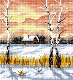 Birch in winter (4 seasons)