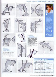 Piruetas de delfines 1