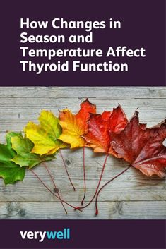 Learn about the effects of seasonal temperature changes on thyroid function and the impact they have on hypothyroidism treatment. Hypothyroidism Diet Plan, Thyroid Disease Symptoms, Autoimmune Disease, Thyroid Issues, Thyroid Medication, Underactive Thyroid, Thyroid Problems, Medical Problems, Larissa Reis