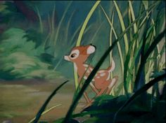 Bambi Learning To Walk - And it's adorable. Just like everything this prince of the forest does.